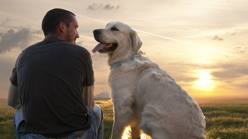 Live a Fuller Life with Man's Best Friend